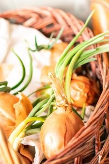 Oignons organiques colorés avec des pousses vertes.