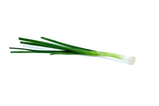 Oignons verts isolés sur blanc
