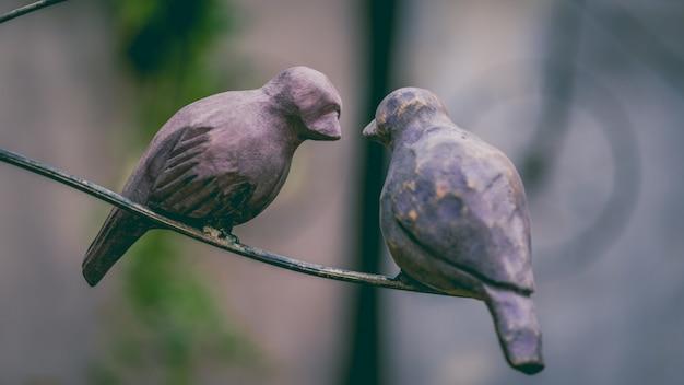 Oiseau sur une branche d'arbre