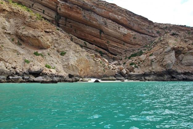L'oiseau dans la baie de shuab sur l'île de socotra, océan indien, yémen