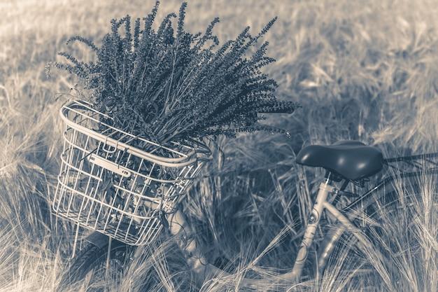 Old vintage photo vélo panier guidon fleurs champ de blé