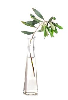 Olive dans une éprouvette