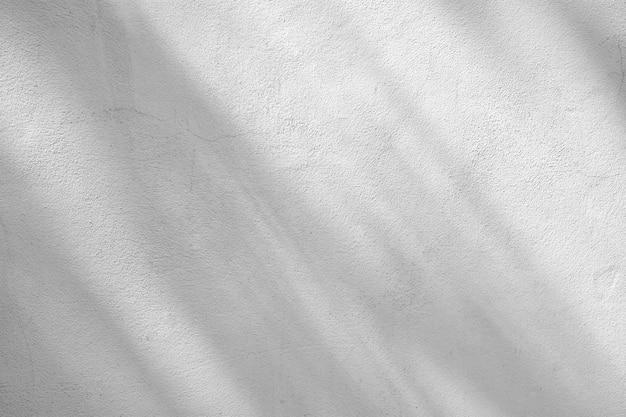 Ombre de branches et de feuilles sur un mur de ciment blanc