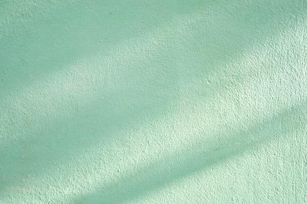 Ombre de branches et de feuilles sur un mur de ciment vert pâle