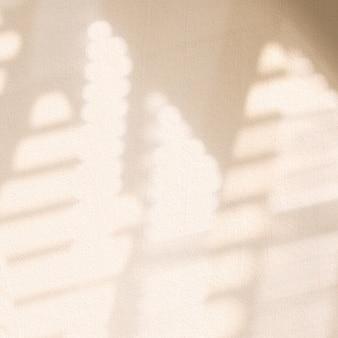 Ombre de fenêtre esthétique beige sur fond de texture