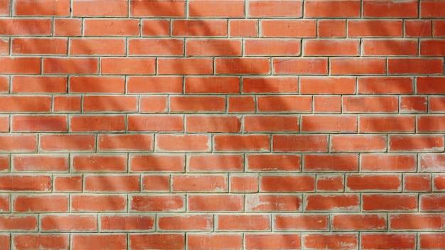Ombre de feuille d'arbre et branche sur mur de briques antiques orange