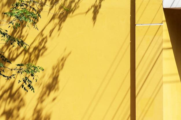 Ombre d'une feuille et d'une branche sur le mur de béton jaune