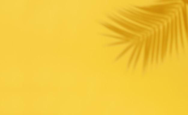Ombre de feuille de palmier sur fond jaune. résumé fond clair de feuille de palmier ombres avec copie-espace.