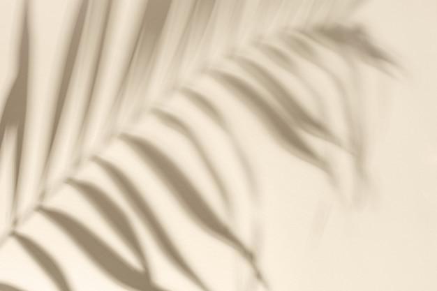 Ombre de la feuille de palmier naturelle sur papier jaune clair