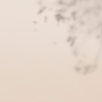 Ombre de feuille tropicale sur fond beige