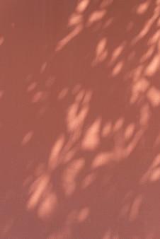 Ombre de feuilles sur un mur orange