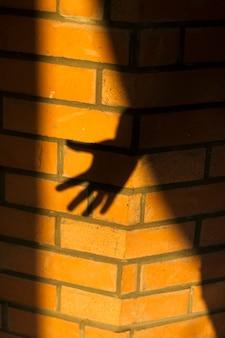 L'ombre d'une main sur un mur de briques