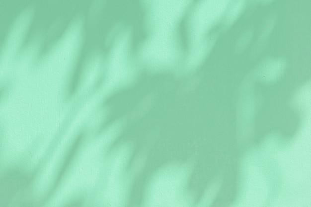 Ombre végétale sur fond vert