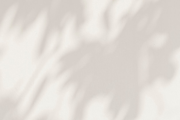 Ombres de feuilles sur une illustration de fond de ciment