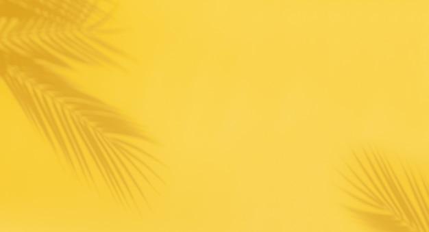 Ombres de feuilles de palmier sur fond jaune. résumé fond clair de feuille de palmier ombres avec copie-espace.