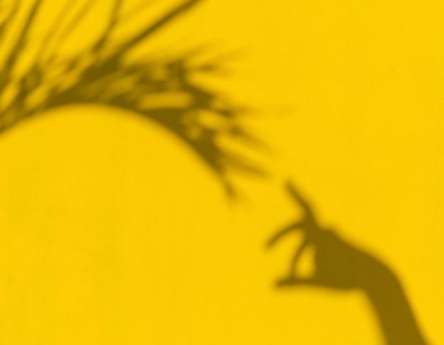 Ombres de feuilles ttropicales avec la main sur fond jaune