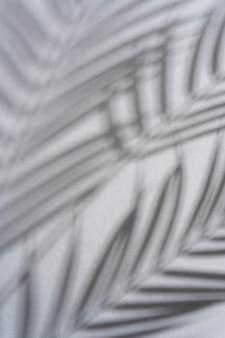 Ombres naturelles et abstraites