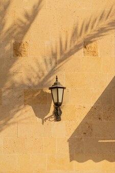 Les ombres des palmiers sur les murs clairs d'un bâtiment avec lanterne