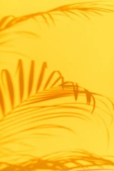 Ombres de palmiers tropicaux feuilles sur fond de mur jaune pastel.