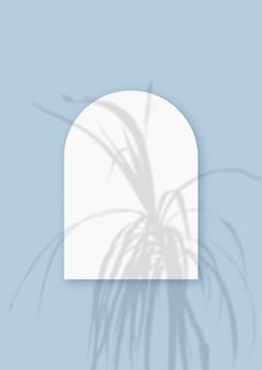 Ombres végétales superposées sur une feuille en forme d'arche de papier blanc texturé sur fond de table bleu