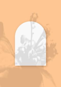Ombres végétales superposées sur une feuille en forme d'arche de papier blanc texturé sur fond de table orange