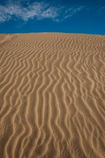 Ondulations du sable du désert