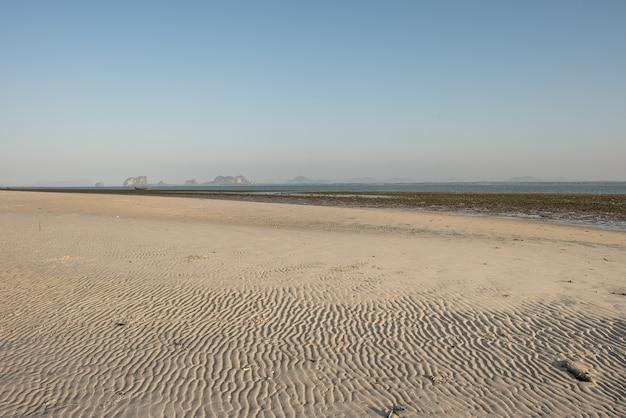 Ondulations sculptées dans le sable par les vagues
