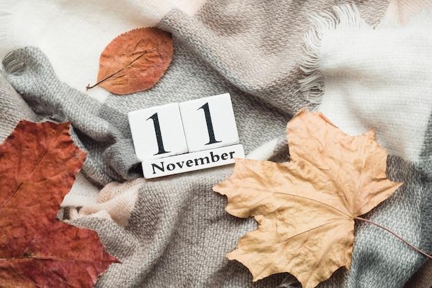 Onzième jour du calendrier du mois d'automne novembre.