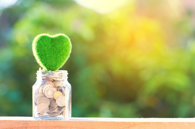 Or et argent avec pièce de bouteille fermée sur beau fond vert naturel.