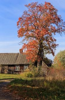 Orange lumineux et ciel bleu et une maison dans le village
