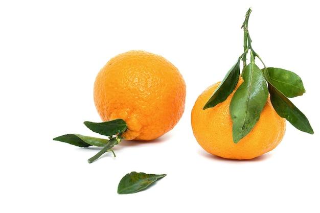 Les oranges fraîches isolées sur fond blanc alimentation saine vue de face