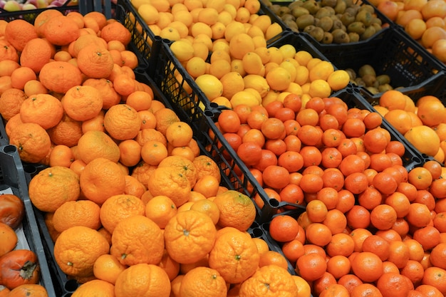 Oranges fraîches sur le marché placées dans des boîtes, nourriture saine