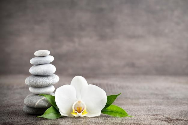 Orchidée blanche et pierres de spa sur fond gris.