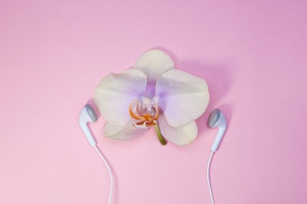 Orchidée fleur avec écouteurs / concept minimal entendre la nature, protéger l'environnement.
