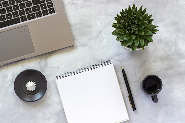 Ordinateur portable gris, bloc-notes vide et ouvert, tasse de café, succulent sur marbre