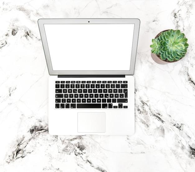 Ordinateur portable plante succulente bureau lieu de travail mise à plat