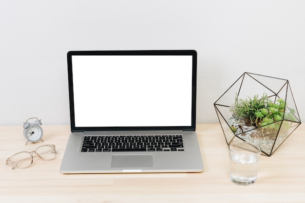 Ordinateur portable avec une plante verte sur une table en bois