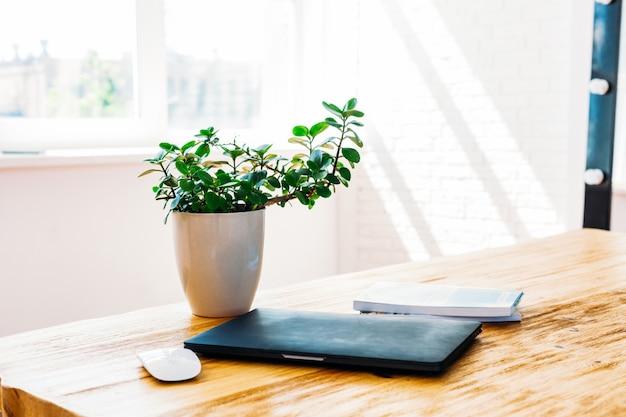 Ordinateur portable de table, ordinateur, pot de fleur, souris d'ordinateur portable, travail internet, maison