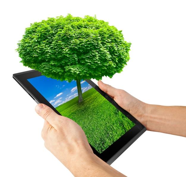 Ordinateur tablette isolé sur fond blanc. arbre