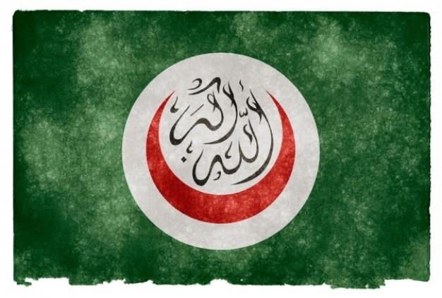 Organisation de la coopération drapeau grunge islamique