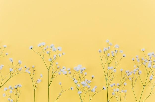 Ornements floraux