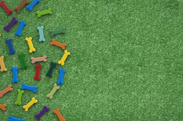 Os de chien colorés sur fond d'herbe verte