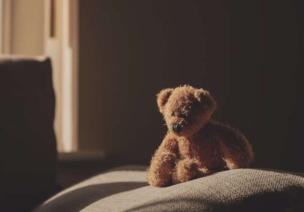 Ours en peluche assis sur un canapé dans une pièce sombre avec la lumière du soleil qui brille de la fenêtre