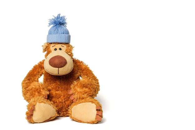 Ours en peluche avec un bonnet bleu sur la tête.
