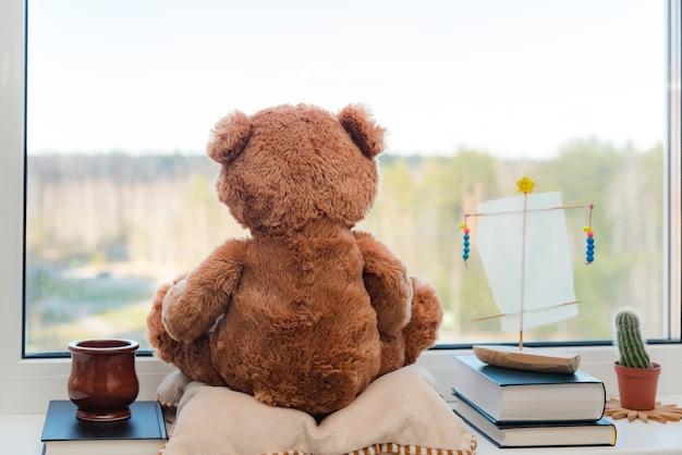Ours en peluche brun et livres près d'une fenêtre