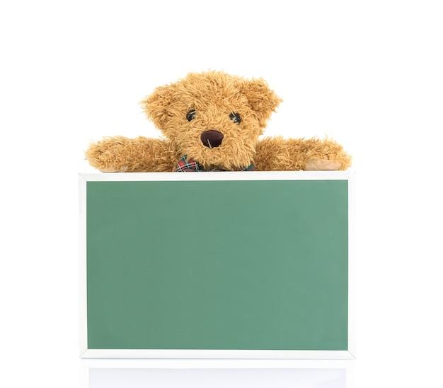 Ours en peluche avec un carton vert vide