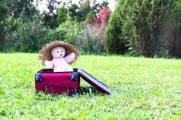 Ours en peluche en chapeau d'été dans un sac de voyage ouvert avec des vêtements sur une prairie d'été verte