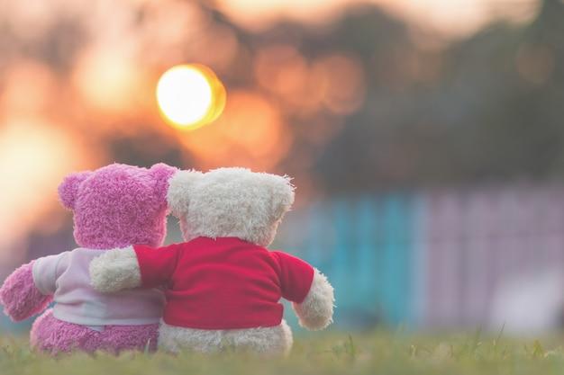 Ours en peluche avec coucher de soleil