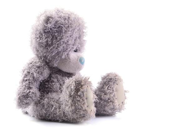 Ours en peluche sur fond blanc