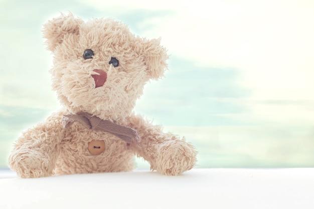 Ours en peluche avec un fond de ciel bleu, il est debout prendre une photo avec sourire heureux.